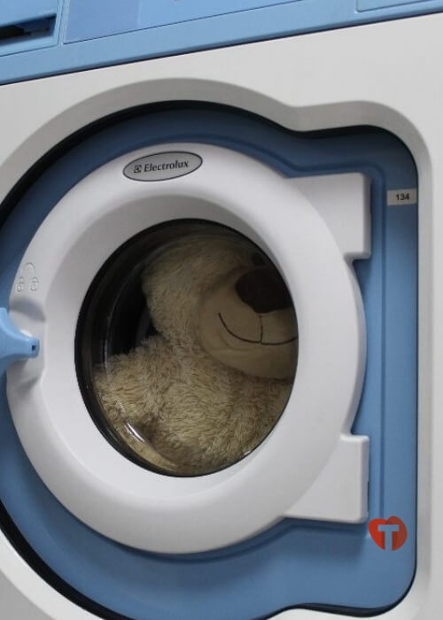 Медведь в стиральной машинке