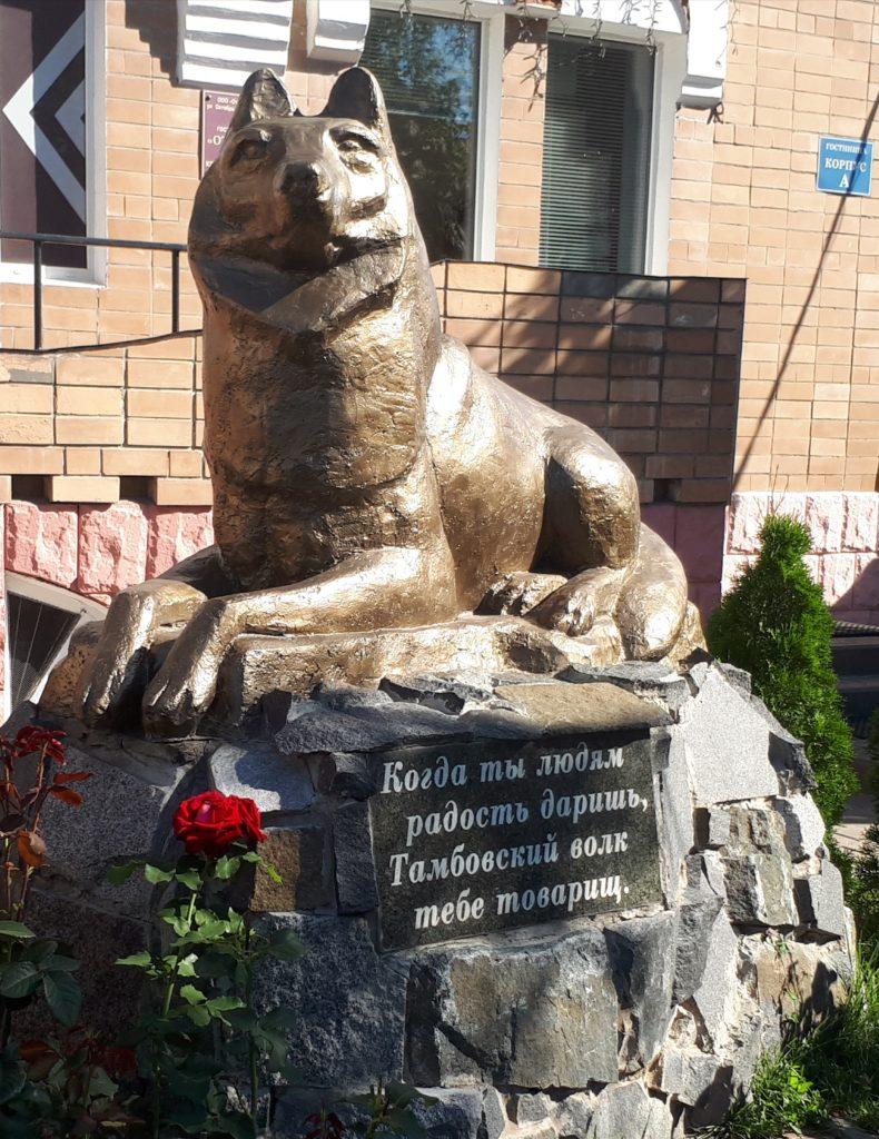 Волк Тамбовский у гостиницы Отель в Тамбове