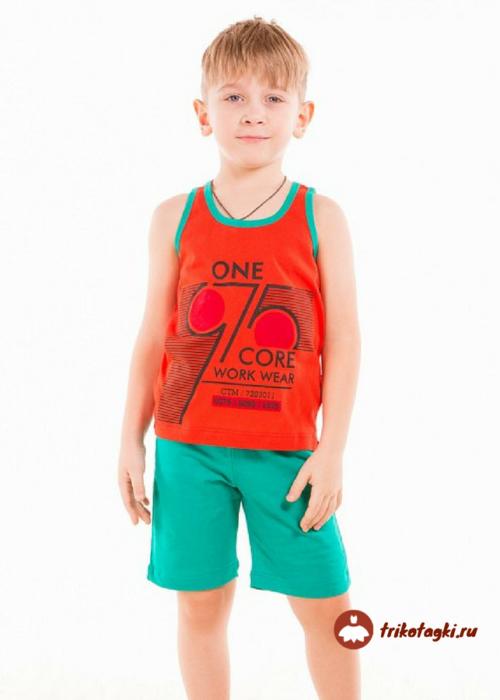 Летний костюм на мальчика с борцовкой и шортами