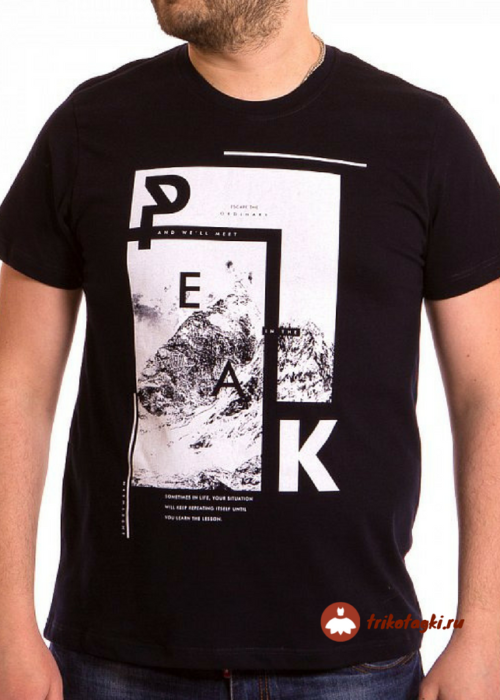 Черная мужская футболка с рисунком