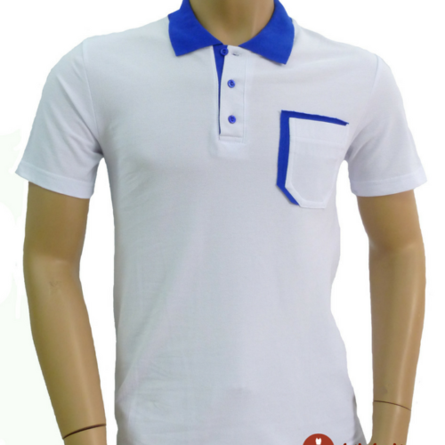 Мужская футболка поло белая с синей отделкой