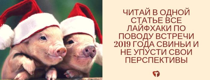 В чем встречать новый 2019 год