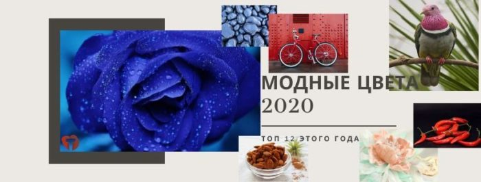 Модные цвета 2020